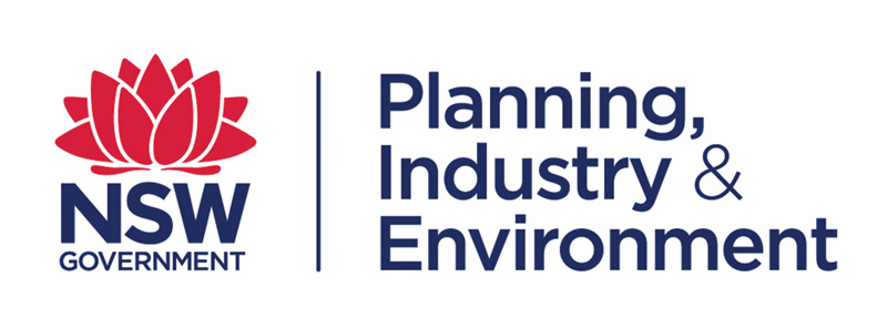 NSW Planning, Industry & Environment Logo